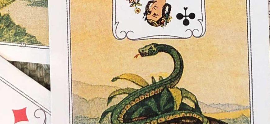 Карта Змея Ленорман