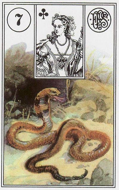 Так выглядит карта Змея в малом оракуле Ленорман.